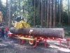 Got Logs? Portable Sawmill Services (serving all of Oregon)
