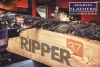 Ripper 37 blades for all mills - Order Online!
